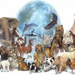 ¿Ascienden los animales?