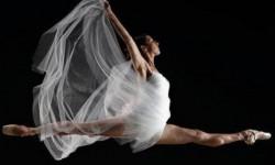 scuola_danza_800_800