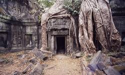 El templo de Ankor Wat