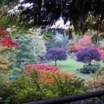 El Jardín de los Pensamientos