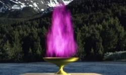 llama-violeta-caliz