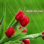 Dejen de Anhelar – Creen Ahora
