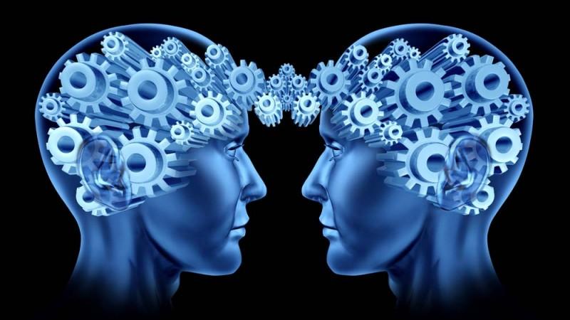 conexion cerebros