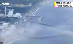 Mar en Fukushima