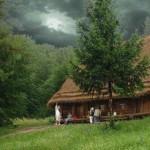 Las mejores casas, para perderte en el bosque