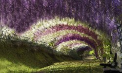 tuneles místicos