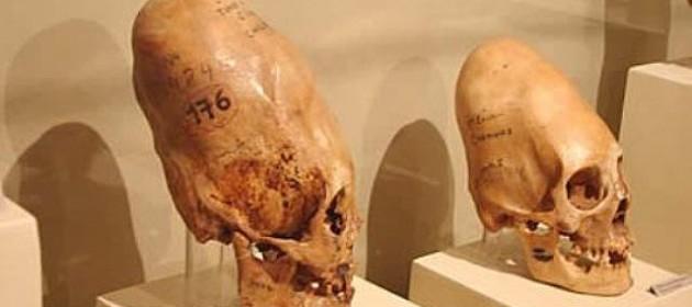 LOS ANUNNAKIS - Página 5 Museoregionalicade03-630x280