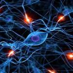 Consciencia de las Células