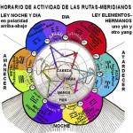 El Reloj Biológico según la Medicina Tradicional China