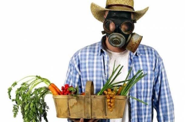 Plantas con pesticidas toxicos