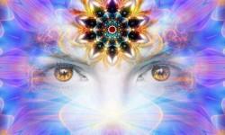 Reconocer la vibración
