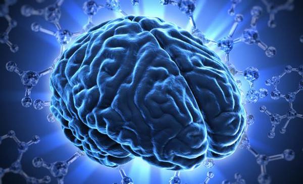 Causas emocionales del cerebro