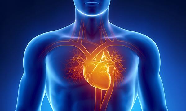 Causas emocionales del corazón