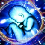 La Reencarnación Por Buda Kalky