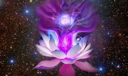 La llama violeta habla