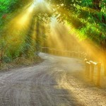 Los Caminos hacia la Espiritualidad