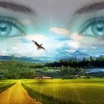 Auto-conocimiento El Camino de la Felicidad