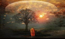 El camino en soledad