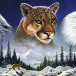 ¿Cómo nos guían los Animales de Poder?