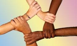 La unidad de hizo diversidad