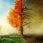 7 leyes del Karma: ¿Cómo pueden cambiar tu vida?
