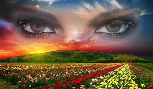 Despierta a la vida divina