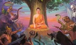 Las 4 nobles verdades de Buda