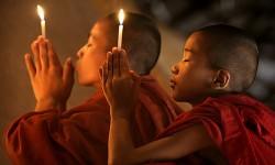 7 Frases budistas