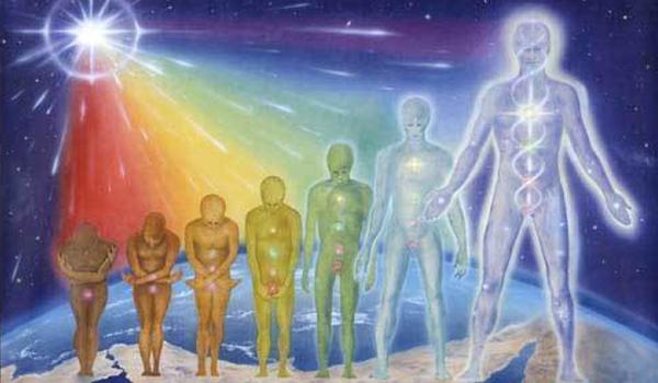 La interconexión entre los diferentes cuerpo del hombre
