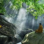 Meditación y práctica: viaje interior