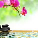 Inducción a la relajación – recorrido del cuerpo