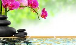 Inducción a la relajación, recorrido del cuerpo