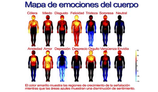 Conflictos emocionales y mentales en el cuerpo