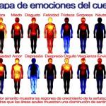 Cómo se instalan los conflictos Emocionales y Mentales en tu Cuerpo