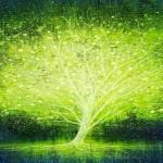 Iluminando mi Árbol Genealógico: Explicación y Decreto