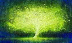 Iluminando mi árbol genealógico