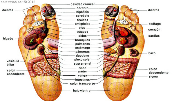 Masaje de pies y reflexología