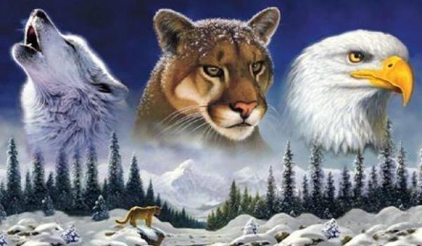 Animales de Poder – Cómo descubrirlo y trabajar con el