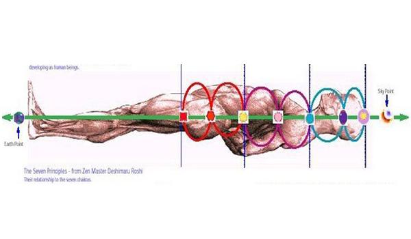Canales y centros acumuladores de energía en el cuerpo humano (I)