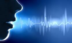 El poder de la voz y el uso de palabras místicas