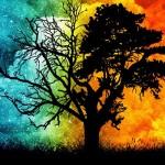 Limpieza Del Árbol Genealógico: La prosperidad