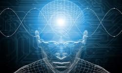 Nuestra mente es maravillosa