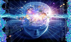 Como desprogramar la mente de contenidos erroneos