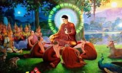 Siguiendo los pasos del Buda