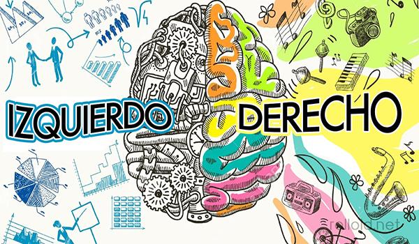 ¿ Que lado de tu cerebro es más dominante?