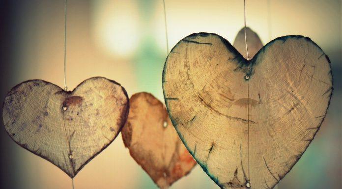 lo contrario al amor