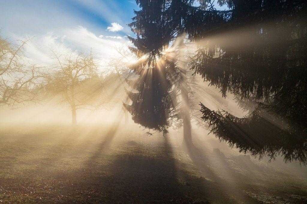 Cuerpo de luz en la consciencia multidimensional