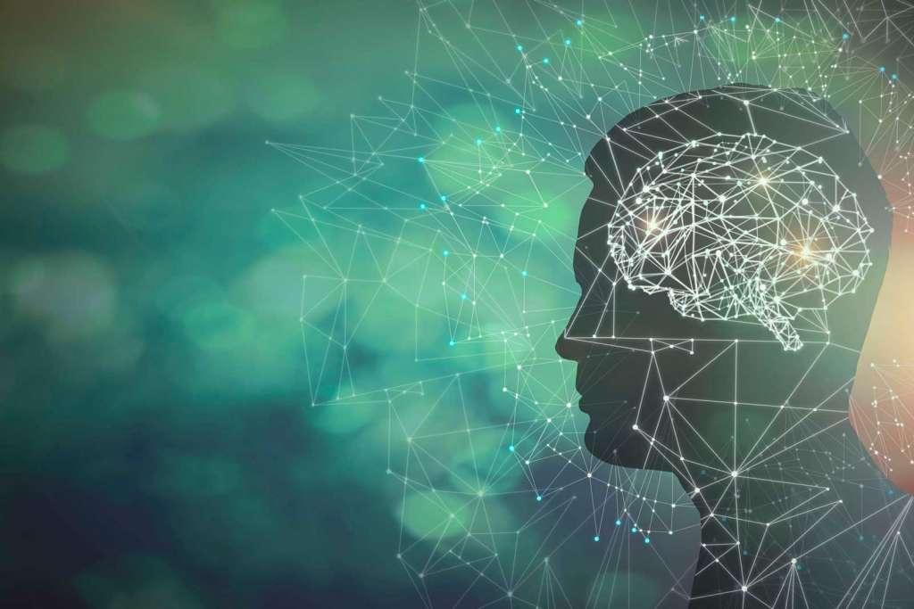 Mente y cerebro