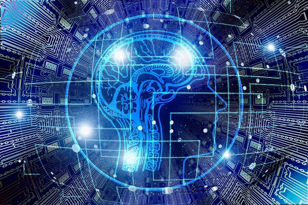 Mente y cerebro como software y hardware