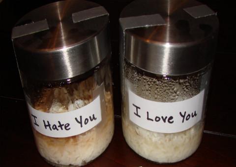 Botes con arroz y agua y con mensaje de te odio y te amo demostrando las formas de pensamiento.